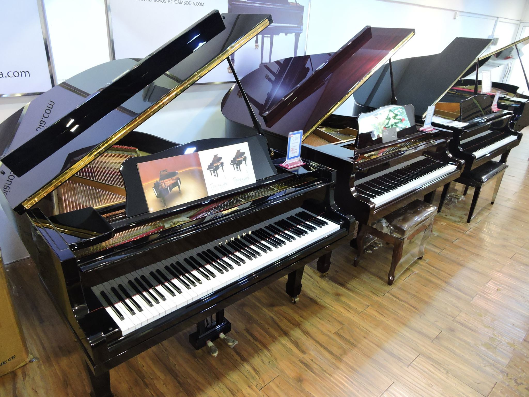 The Largest Piano Collection in Cambodia